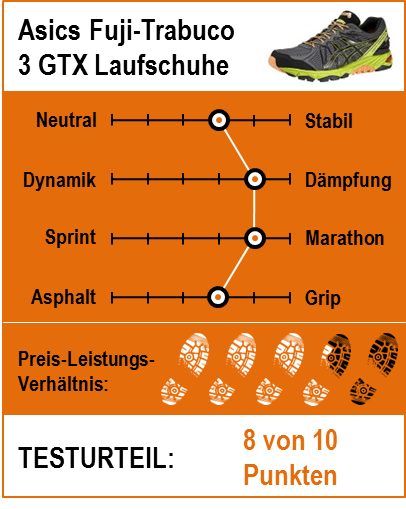 Asics Gel Fuji-Trabuco 3 GTX Testbericht